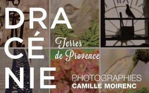 Exposition de photographies au Pôle Culturel Chabran